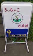 きっちゃこ (1)