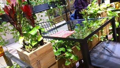 Aoyama Flower Market (11)
