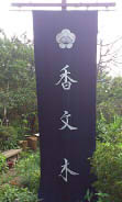 香文木 (1)