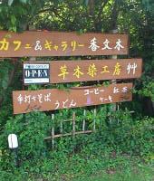 香文木 (3)