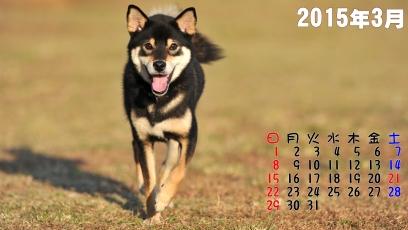 ゆず君カレンダー