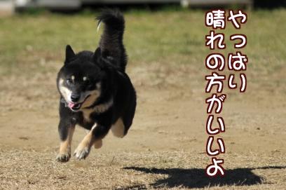 晴れがいい!!