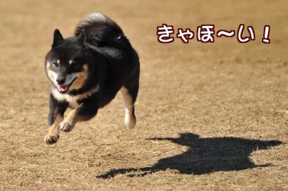 ハッスル~