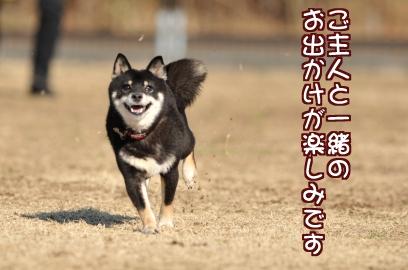 遊び行こ~