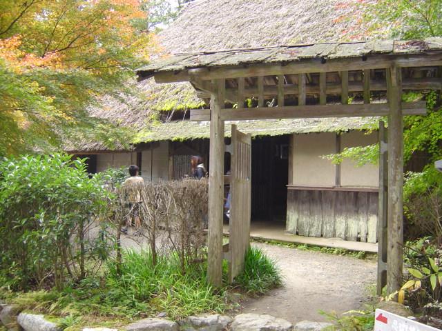 ninjyanosato (5)