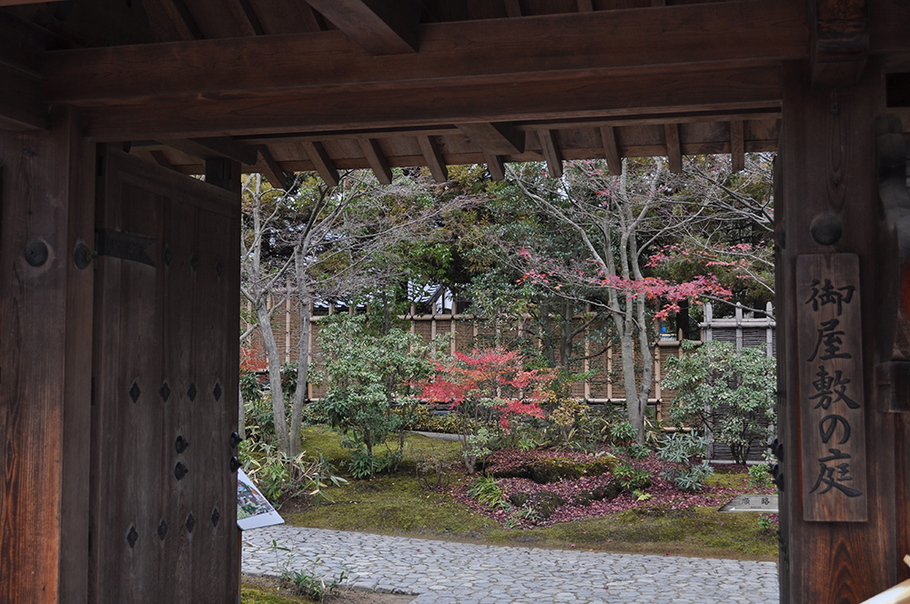 niwasuteki (7)