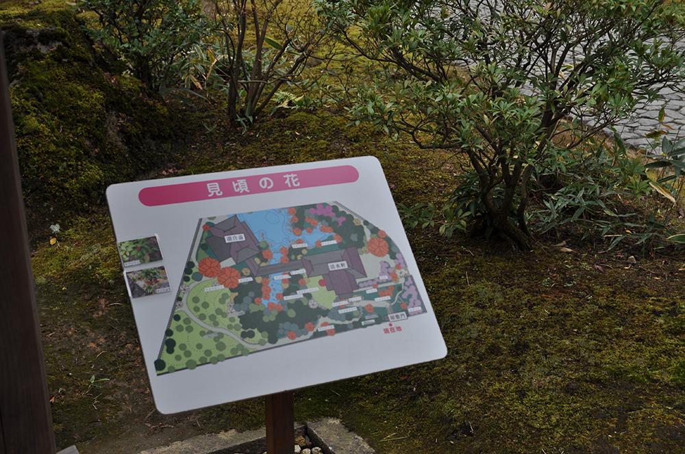 niwasuteki (10)