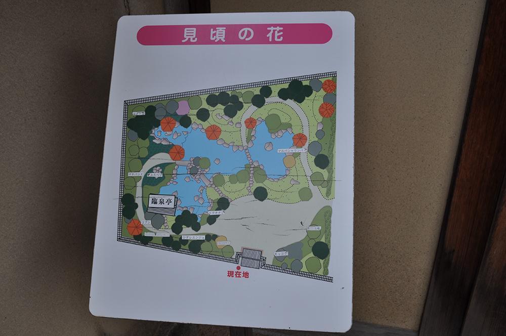 himejiniwa (12)