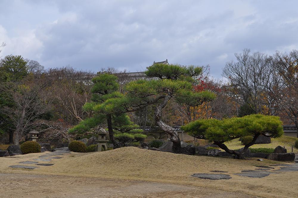 himejiniwa (13)