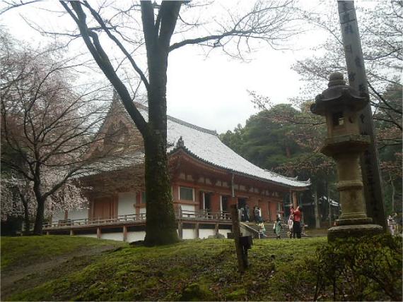 醍醐寺_金堂