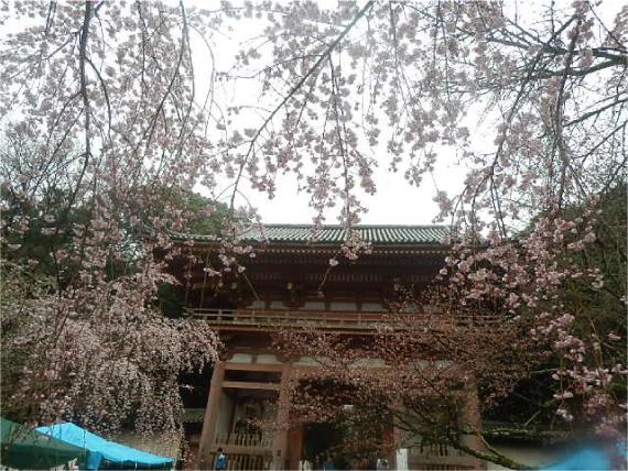 醍醐寺_西大門