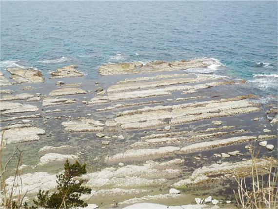 禄剛崎の海岸