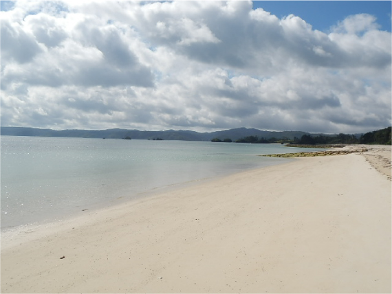 屋我地島の海岸