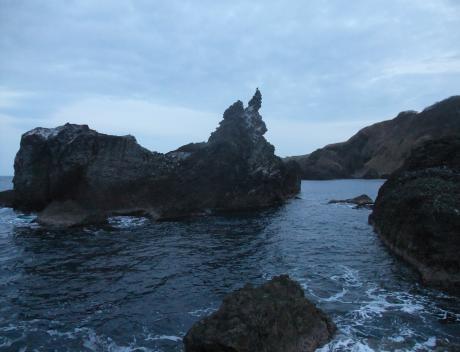 カモメ本島