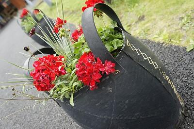 富良野マルシェお花