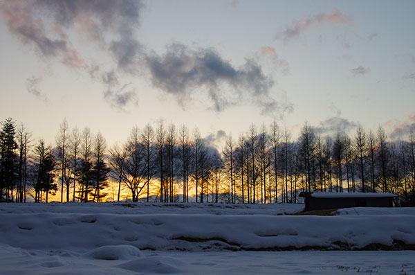 東和町 石鳩岡の夕景