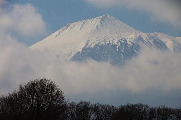 松尾寄木からの岩手山