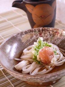 Ume-ten-udon-2