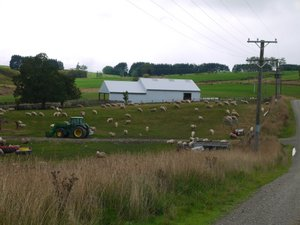 Wilden-farm-1