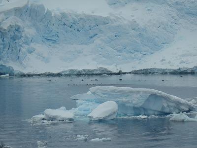 南極2日目 (10)