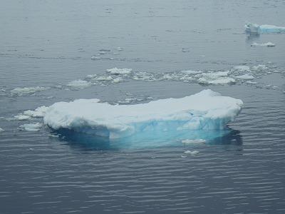 南極2日目 (11)