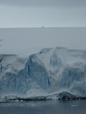 南極2日目 (16)