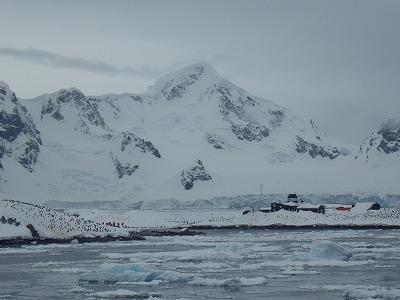 南極2日目 (18)