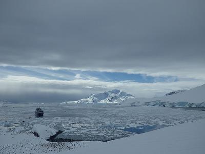 南極2日目 (26)