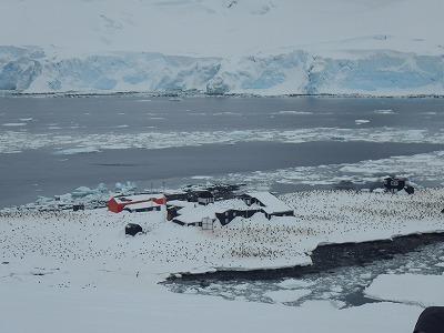 南極2日目 (28)