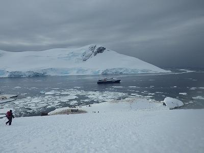 南極2日目 (32)