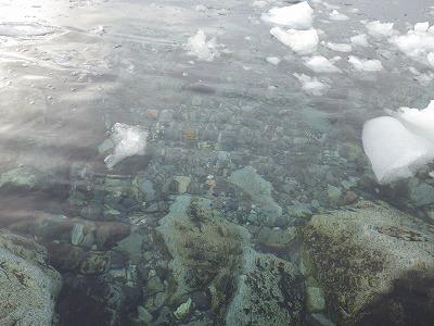 南極2日目 (38)