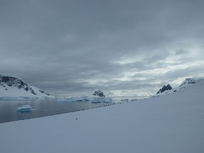 南極3日目 (4)
