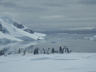 南極3日目 (13)