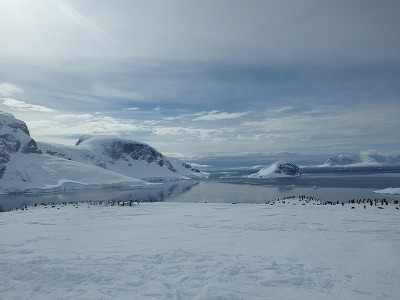 南極3日目 (16)