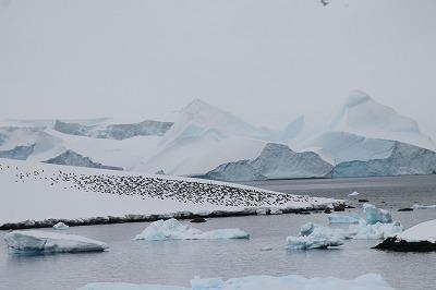 流氷観測 (40)