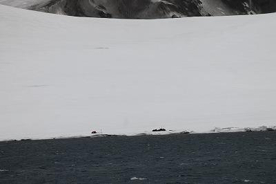 南極5日目 (4)