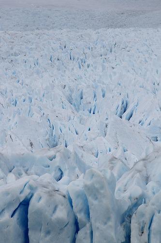 氷河の端 (8)
