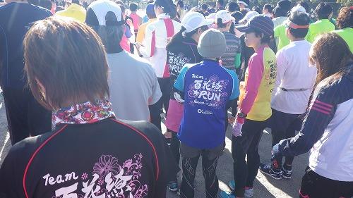2015美浜タウンマラソン (4)