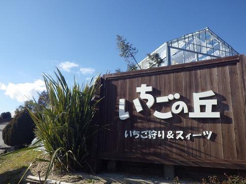 2015苺狩り (7)