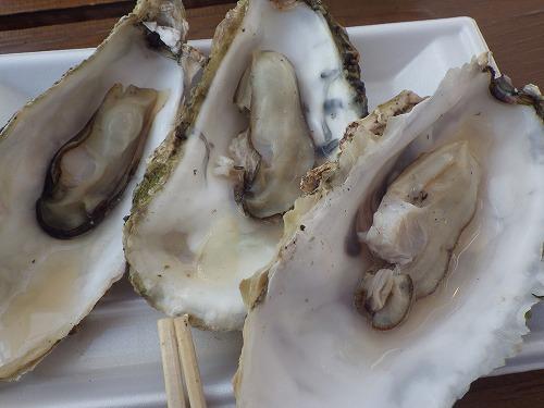 魚太郎 (5)