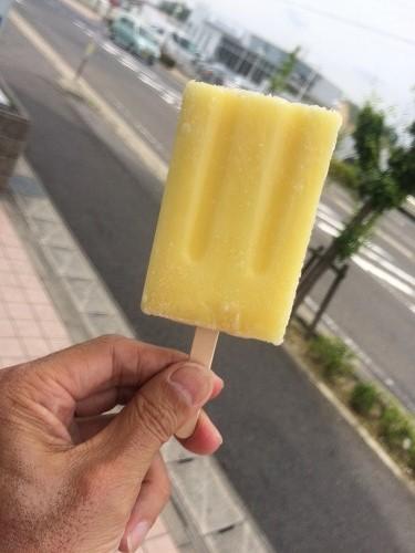 アイスクリーム2015 06 (1)