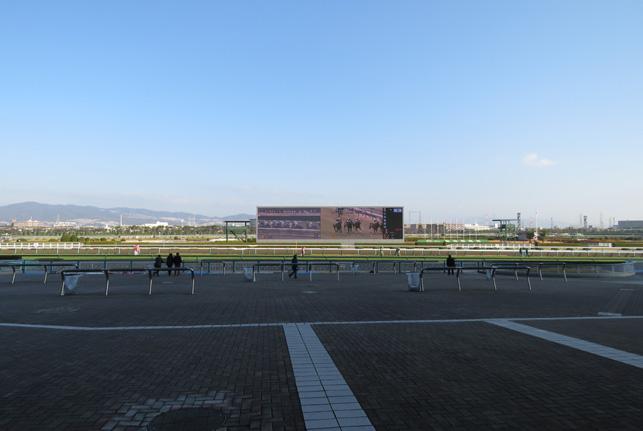 阪神競馬場7