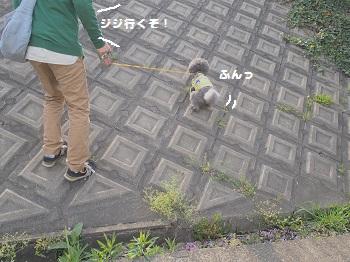 公園さんぽ20150425-4