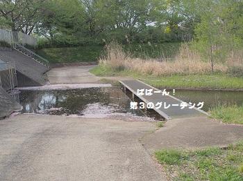公園さんぽ20150425-7