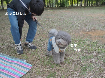 公園20150429-7