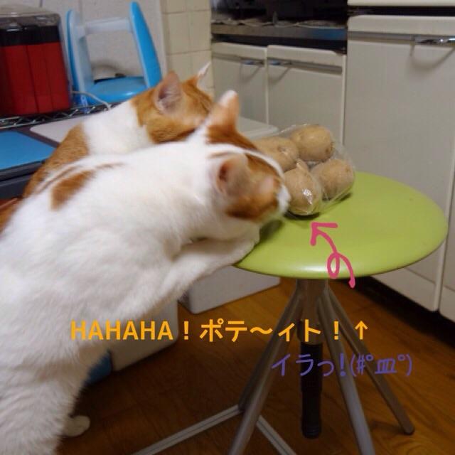 20150322141921c4f.jpg