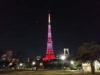 東京タワーバレンタインカラー