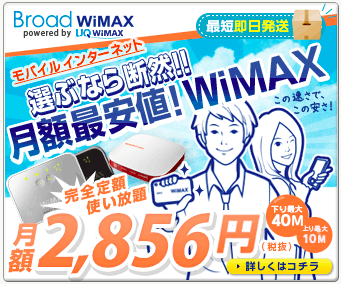 BroadWiMAX3.png