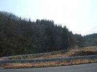 2015-03-17-004.jpg