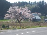 2015-04-15-003.jpg